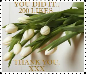 Facebook 200 likes